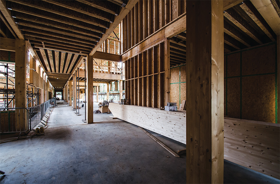 The Cygnum timber frame structure, primarily made of locally grown pine