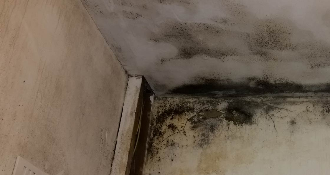 Mould diagnosed as caused by lack of air circulation