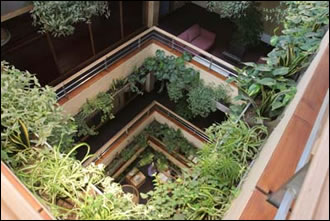 the view looking into the atrium of the completed building reveals timber levels complimented with extensive planting
