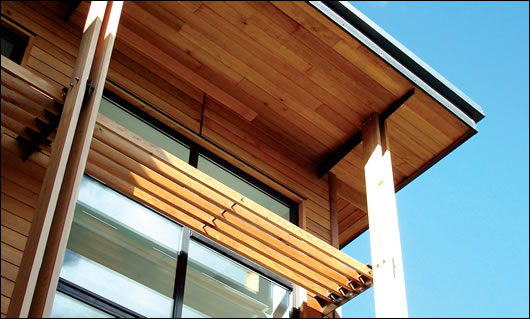 A cedar brise soleil reduces glare inside the building