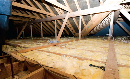 Francis Murray previously installed 100mm of attic insulation. Stephen Harte has advised him to add another 200mm