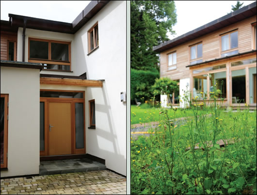 (below left) the north view of the house, the exposed glulam beam above the front door acknowledging the building's timber anatomy; (below right) wild flowers in the garden reinforce the sense of leafy suburban setting