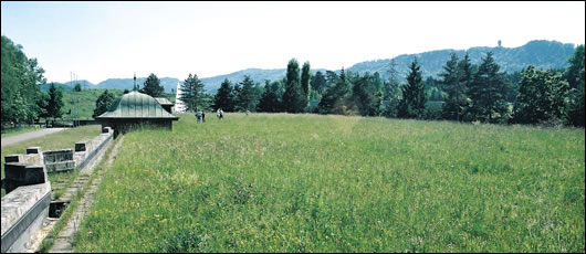 The moos filtration plant near Zurich in Switzerland features nine acres of extensive roof meadow that supports 175 different plant species, including rare green-winged orchids;