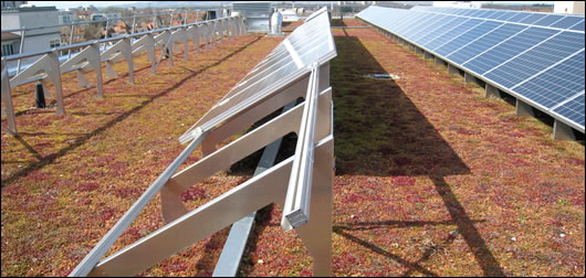 An extensive green roof in Freiburg, Germany features an array of Solar PV cells. Green roofs assist solar PV technology by cooling rooftop temperatures. Overheating is a key reason for inefficiencies in PV technology