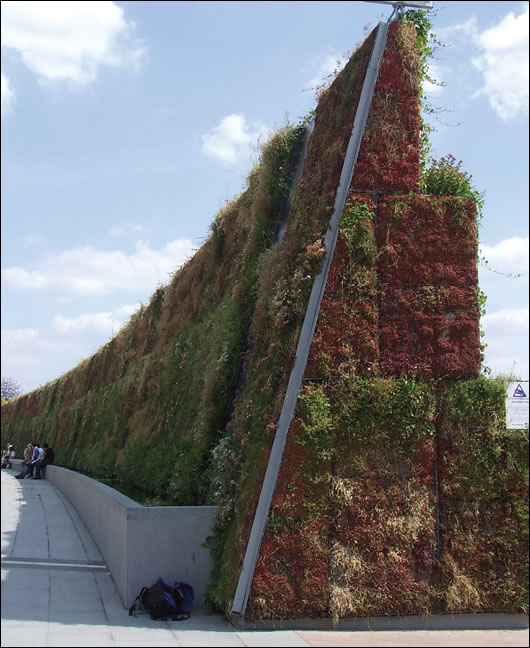 A stand-alone living wall in the Millennium Park, London