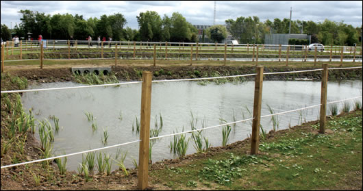 Wetland areas will contain and treat park water within a series of reed beds