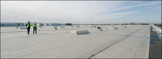 The vast expanse of roof space gives a sense of the sheer size of the building