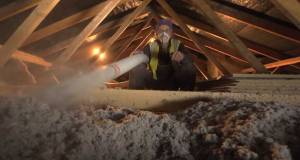 Don't neglect simple attic insulation — Ecocel